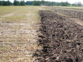 Почва после одного прохода культиватора Тонар Агро